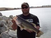 21 in bass