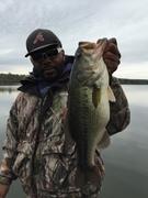 BIG FISH eat BIG JIGS!