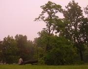 Wld bill Hickock park damaged