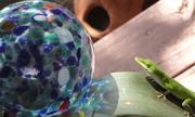 Lizard ball