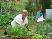Quilt garden - Matakana