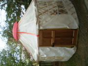 Greenhouse & Wedding 012