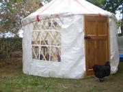Greenhouse & Wedding 015