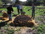 Building a compost at Mokai Kainga in Owhiro Bay, Wellington