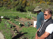 Robert Te Whare of Mokai Kainga shows us around the beautiful and idyllic grounds of Owhiro Bay community gardens in Wellington. Hard to believe that just a year ago it was covered in blackberries and