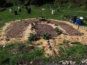 A purangi inspired garden at Mokai Kainga community gardens in Owhiro Bay, Wellington