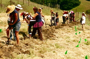 Building a swale with a class
