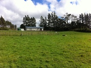 My paddock and house