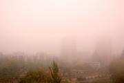 Se ha perdido la ciudad entre la neblina y el humo.