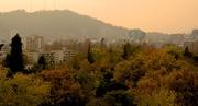 En pleno otoño mi vecino ¿Cómo vive?