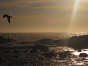 Puesta de Sol en Valparaíso