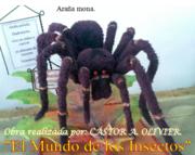 Araña mona.