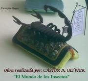 Escorpión Negro.