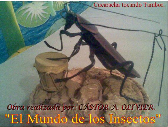 Cucaracha Tocando  Tambor.
