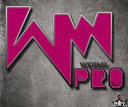 Wesmil Productions Logo