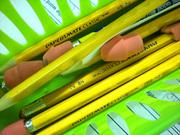 Bluff Elementary School Student Work #10