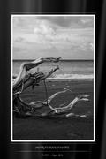 Θάλασσα - Sea