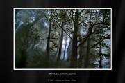 Τοπία - Landscapes