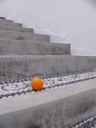 κουρδιστό πορτοκάλι