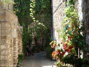 Μεστά, Χίος