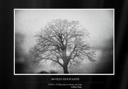 Η Τέχνη είναι το δέντρο της Ζωής - William Blake