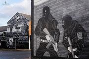 Belfast Colors VΙI - Contrast