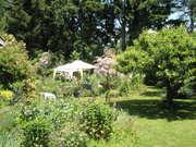 Beauty of Community & Gardens