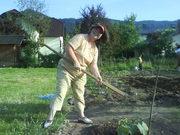 Elderflower Communitygarden