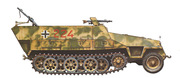 Sd.Kfz.251 Beautiful but no practical (too difficult)