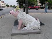 Lexington Pig Bride