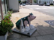 Lexington Cheerleader Pig