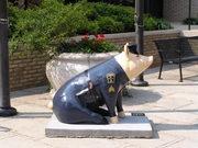 Lexington Cop Pig