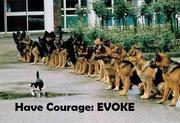 EVOKE have courage