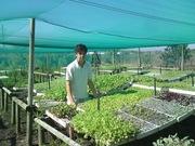 Lynedoch Ecovillage Follow up. My amazing journey