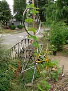 Bike Parts Used In Garden