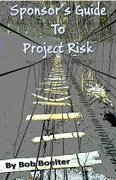 Sponsor's Guide to Project Risk