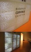 Univerzita Corvinus