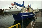 Sailing and Marine Life.