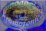 03 missing life loop