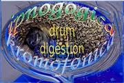 02 drum digestion