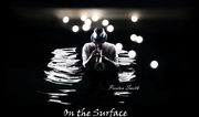 on the surface cover