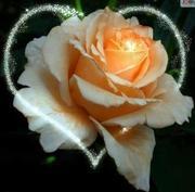 Tu flor en tu corazón