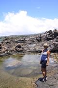 Maui, Holly