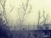 სუსხიანი ზამთარი