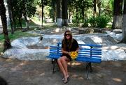 ყვითელი დიდი მზესუმზირები