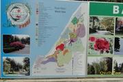 სტრატეგიული რუკა