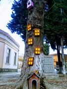 მრავალსართულიანი საცხოვრებელი ხეზე მცხოვრებთათვის