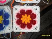 african flower somalia2