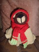 Super Easy Teddybär Bekleidung (2)