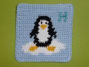 06.11.2014 Pinguin für die glücklichsten Fans der Welt